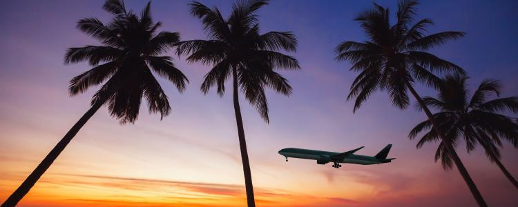 main of Can You Get Your Dream Flight At a Discount?
